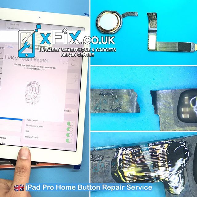 "iPad Pro 9.7"" Home Button/Touch ID Repair Service"